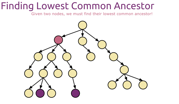 Finding the Lowest Common Ancestor